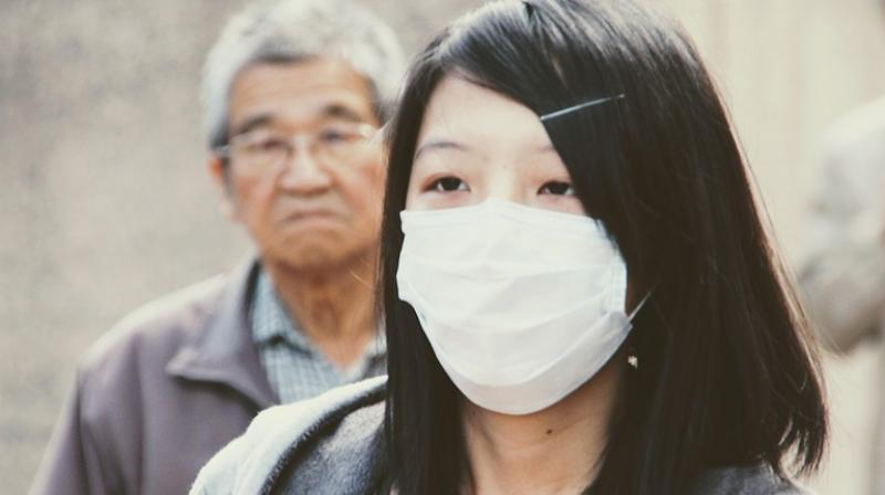 Swine flu is a disease which affects the respiratory tract of pigs and is caused by influenza viruses and is easily transferable to humans (Photo: Pixabay)