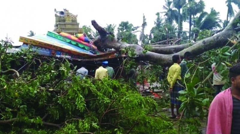 In the wake of the widespread destruction caused by Cyclone Titli in the state, CM Patnaik, had written to PM Modi urging him to release an interim assistance of Rs 10 bn for relief and restoration work. (Photo: File)