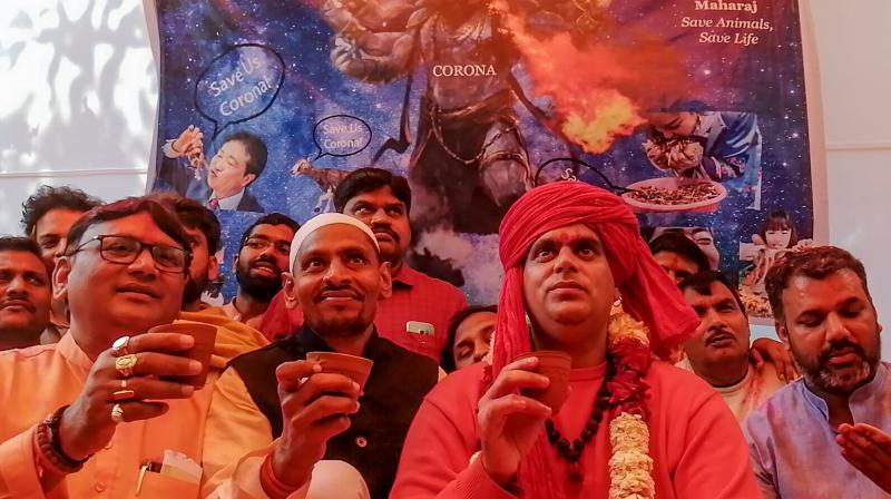 Supporters of the All-India Hindu Mahasabha organised a gau mutra party in New Delhi to publicise cow urine as an antidote to the coronavirus. (AP)