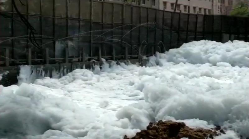 Constant discharge of untreated sewage has turned the lake, located in the suburb of Bellandur to the southeast of Bengaluru, into one of the most polluted waterbodies around.(Photo: Twitter  @ANI)
