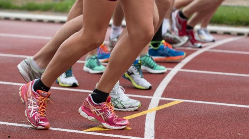 Plant-based diets play a key role in cardiovascular health, which is critical for endurance athletes. (Photo: ANI)