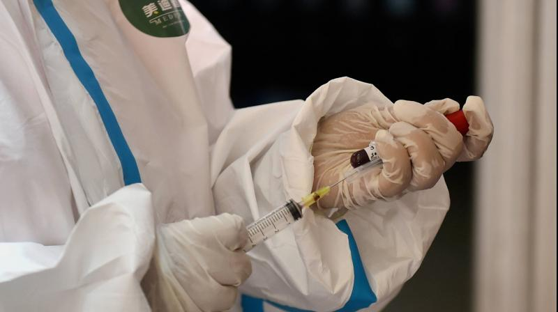 A medic collects blood sample for serological survey to analyse the spread of covid19 in New Delhi. PTI
