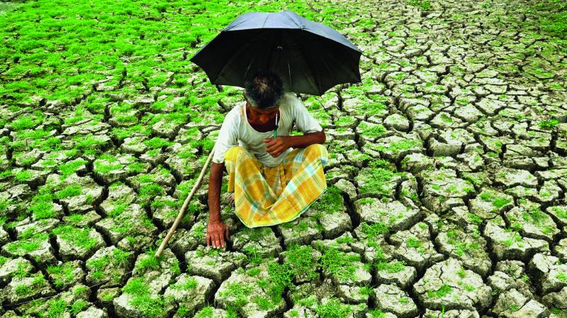 The deep crisis, which afflicts India's agriculture sector, is not unknown. Farming has become an unviable occupation.