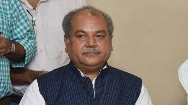 Union Rural Development Minister Narendra Singh Tomar said the overall budgetary allocation for MGNREGA has increased from Rs 55,000 crore in 2018-19 to Rs 60,000 crore 2019-20. (Photo: File | PTI)