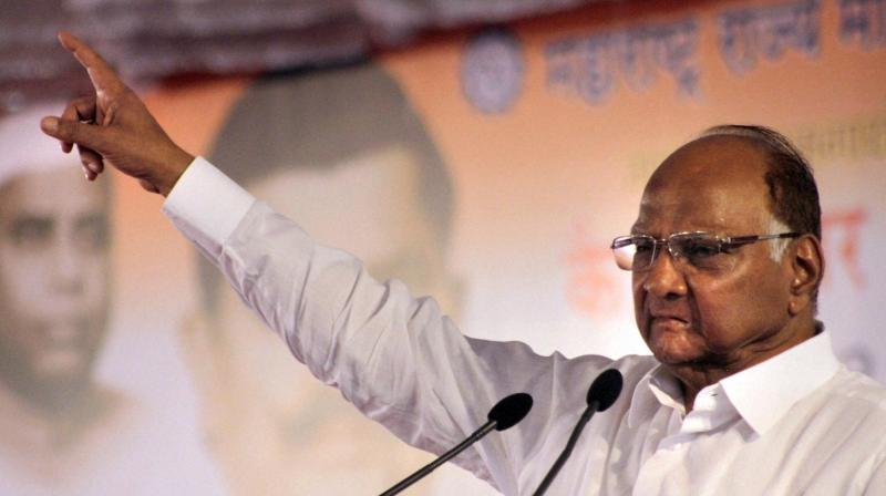 The Shiv Sena sought to know if Pawar, Bharipa Bahujan Mahasangh leader Prakash Ambedkar and others had taken it upon themselves to mislead the course of investigation into the Bhima-Koregaon incident. (Photo: PTI)