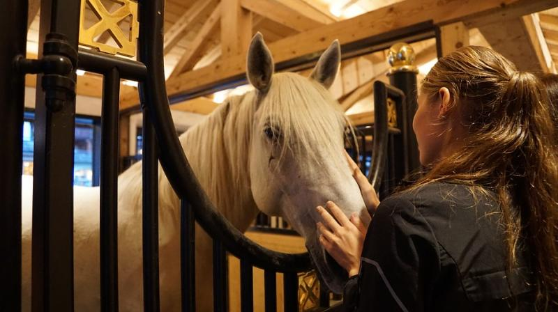It turns out that horses too can tell the difference between dominant and submissive body postures in humans, even if the person is not familiar to them.