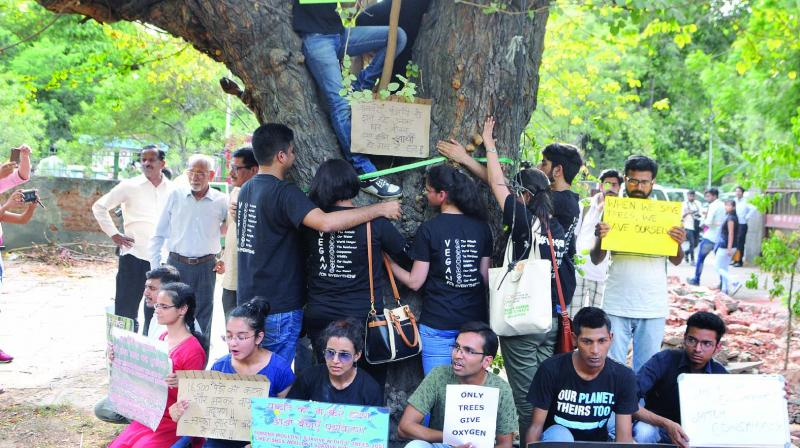 People hug a tree during a protest against cutting of trees at Sarojini Nagar in New Delhi on Sunday. (Photo: Biplab Banerjee)