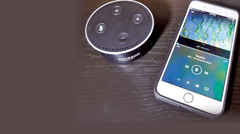The feature can customize songs according to your dogs mood(Photo: Echo Dot)