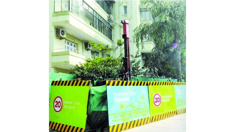 Trees to be axed