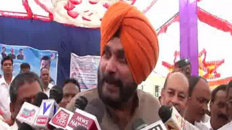 Singh and Sidhu had been at loggerheads since his controversial visit to Pakistan for the swearing-in ceremony of Imran Khan last year where he had hugged Pak Army Chief leading to a huge controversy back home. (Photo: ANI)