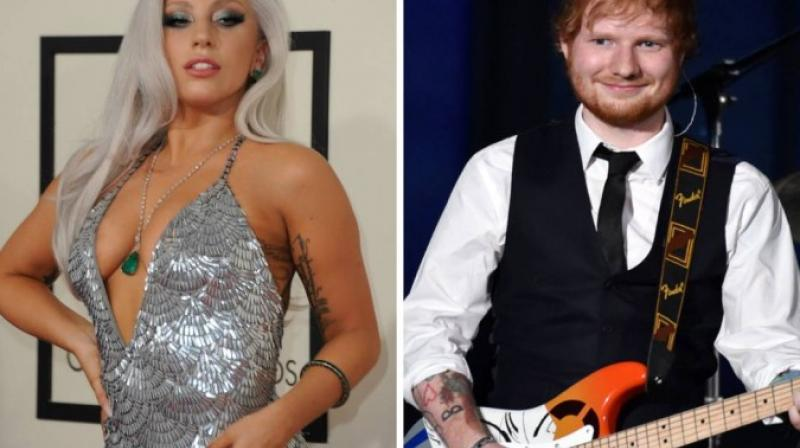 Not just Ed Sheeran, even Lady Gaga has been trolled several times. (Photo: AP/AFP)