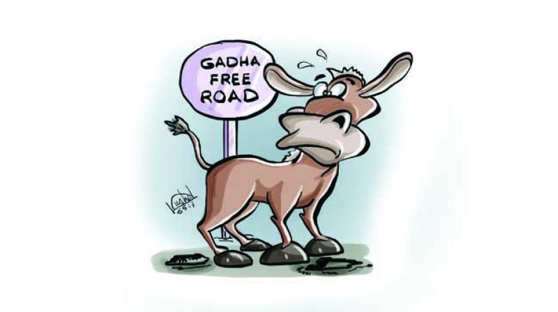 Bureaucrats in UP also took considerable time to realise how the statement got converted from potholes to donkeys.