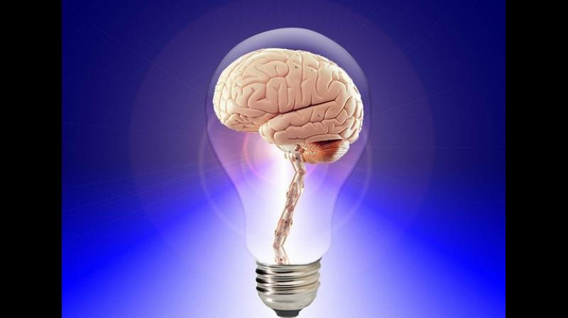 One of the central challenges in modern neuroscience is recording the exchange of information between different regions of the brain. (Photo: ANI)