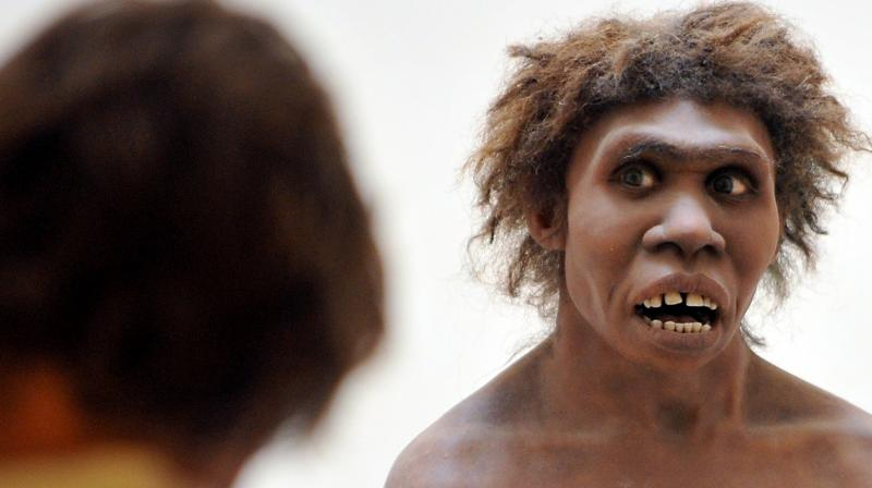 It made much more sense for modern humans to just borrow the already adapted genetic defences from Neanderthals (Photo: AFP)