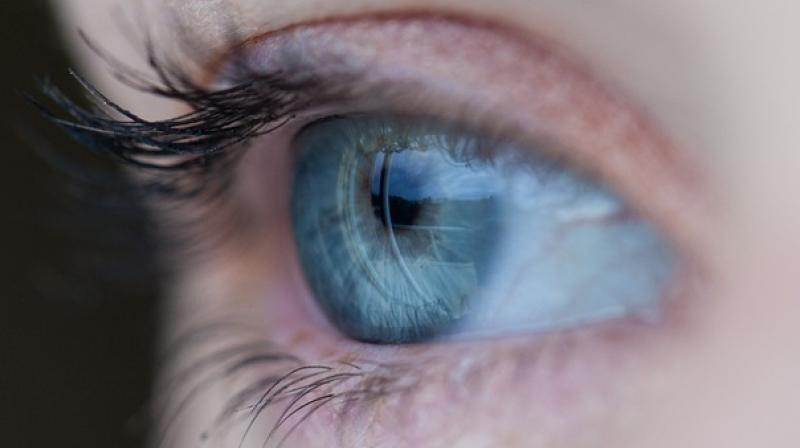 High blood sugar can damage tiny blood vessels at the back of the eye. Sometimes, tiny bulges protrude from the blood vessels, leaking fluid and blood into the retina (Photo: Representational/Pixabay)