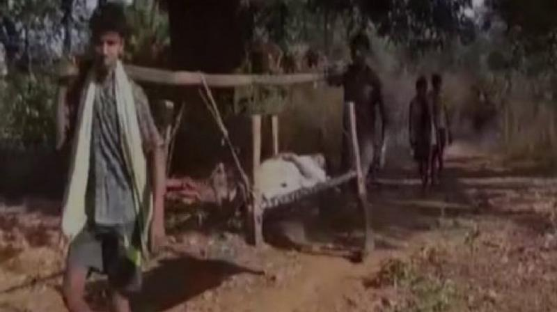 Medical staff carries patient on cot for kilometres in case of emergency. (Photo: ANI)