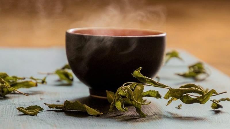 Green tea has a rich history in Asian countries and has been increasingly embraced in the West, in part for its potential health benefits. (Photo: Representational/Pixabay)