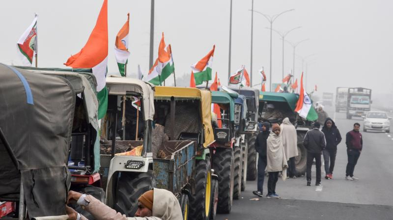 Police said that the rally will be conducted in three parts -- first from Singhu border will have a 62 km-long route, then from Tikri border with around 60 km route and Ghazipur Border with 46 km route. (Photo:PTI)