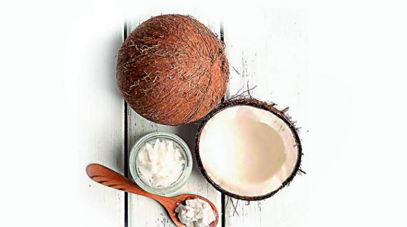 Its role in religious ceremonies is widely known and in South India no gift is complete without a coconut.