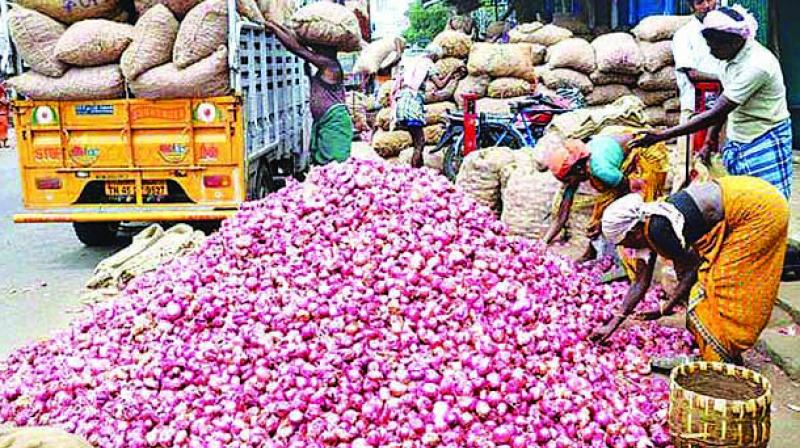 Onion growers and government officials expected the ban would be lifted by the middle of November anticipating higher supplies from the summer crop.