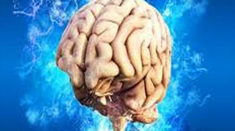 The brain consists of around one hundred billion neurons.