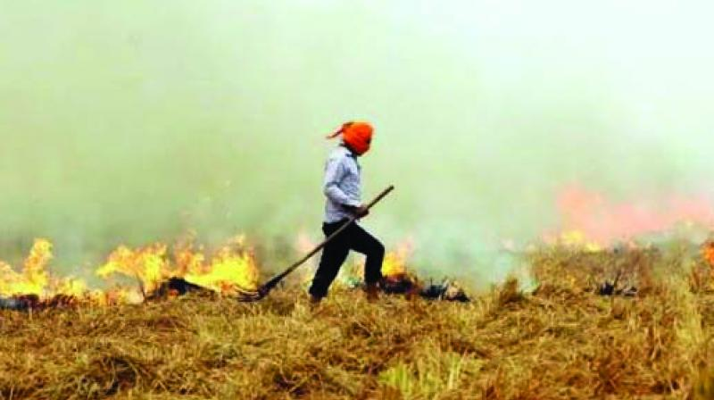 The study used two approaches to assess the pollution level in the Delhi-NCR region.