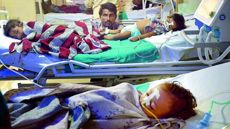 Another data by National Vector-Borne Disease Control Programme and BRD Medical College indicates that one in four encephalitis cases in India were from Gorakhpur. (Photo: PTI)