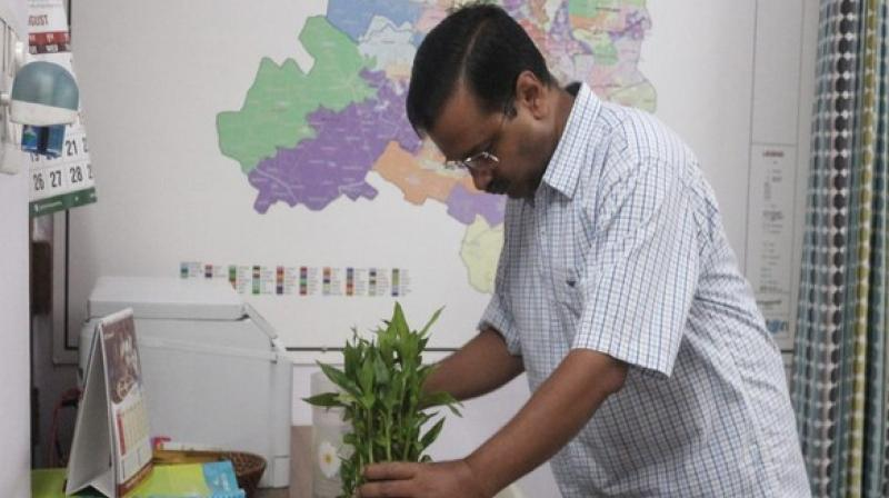 Kejriwal appealed to all ministers, MLAs and the public to begin the mega-campaign from their own homes and spend 10 minutes every Sunday to make sure there is no stagnant water in their homes and surroundings.  (Photo: ANI)
