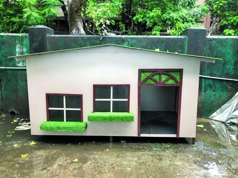 Dog shelters built by Utkarsh Animal Welfare