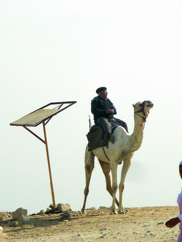 Soldier on a camel at Giza