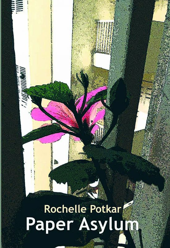 Paper Asylum by Rochelle Potkar Copper Coin pp. 103, Rs 295