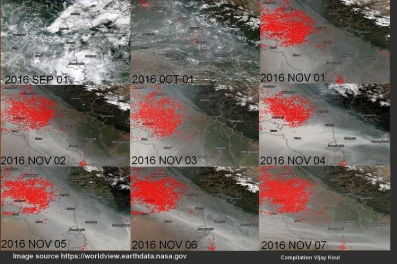 Figure 3: Red indicates live fires. (Photo: NASA)