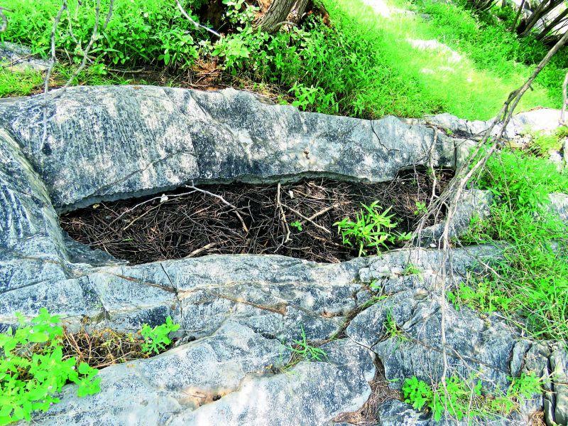 Pre-historic rock cut burials