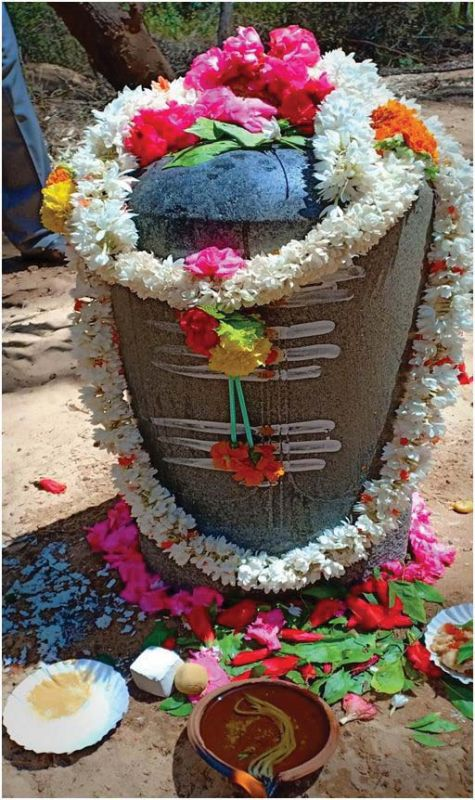 An isolated Shiva Linga is the latest finding at Talakadu