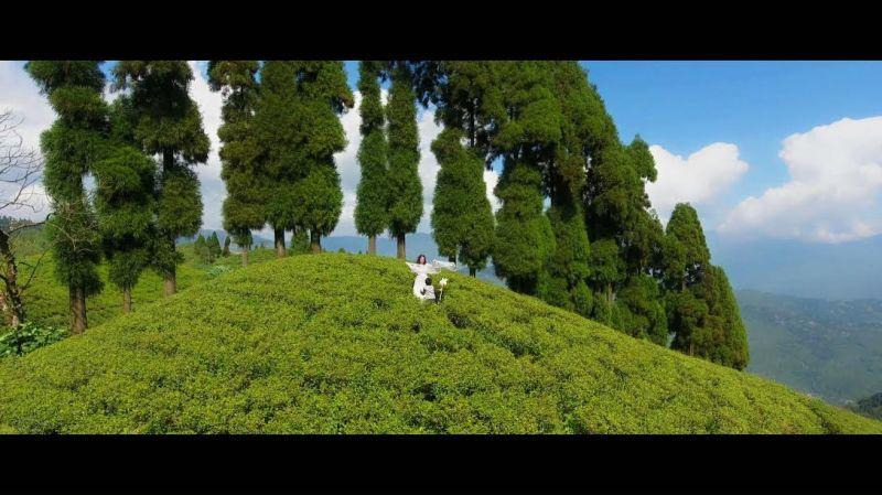 DivyaDarjeeling