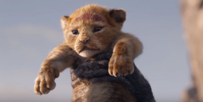 A screen grab from 'The Lion King' teaser. (Courtesy: YouTube/ Walt Disney Studios)