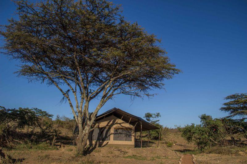 A Guest Tent at Porini Cheetah Camp