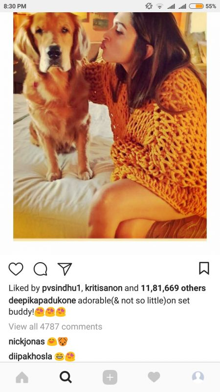 Nick Jonas comments on Deepika Padukone's Instagram post.