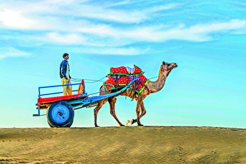 Travel in Jaisalmer