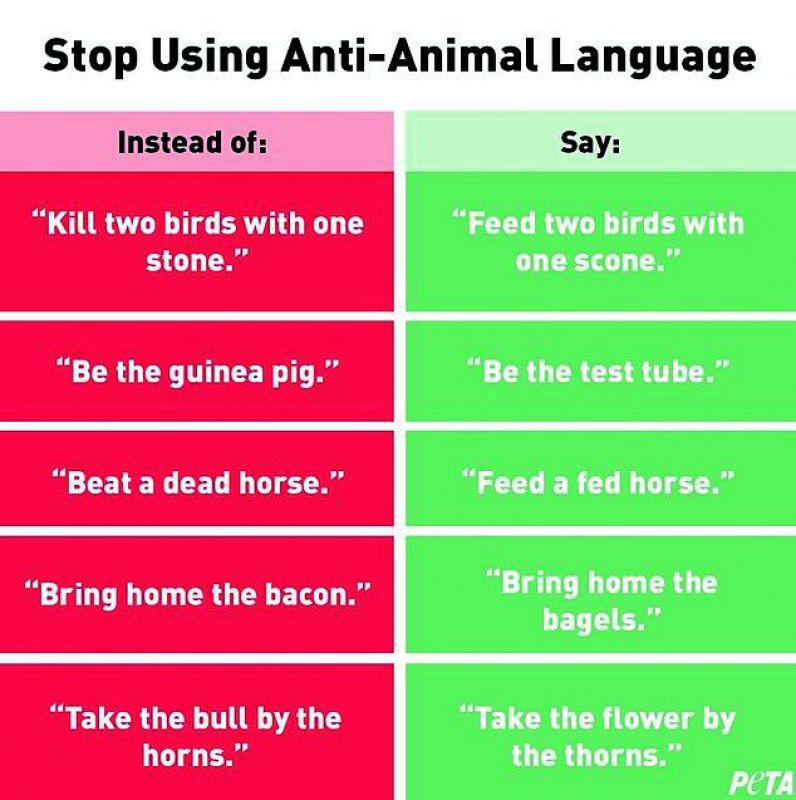 GONE OVER-BOAR: PETA posted the above chart on its social media handles