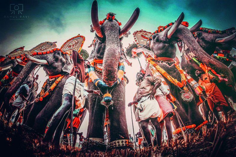 From the festival at Chiravarambathu Kavu, Thrissur.