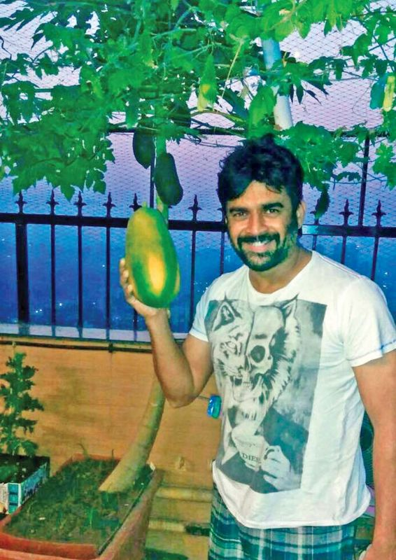 Actor R. Madhavan engaging actively in urban farming at his house. (Photo: DC)