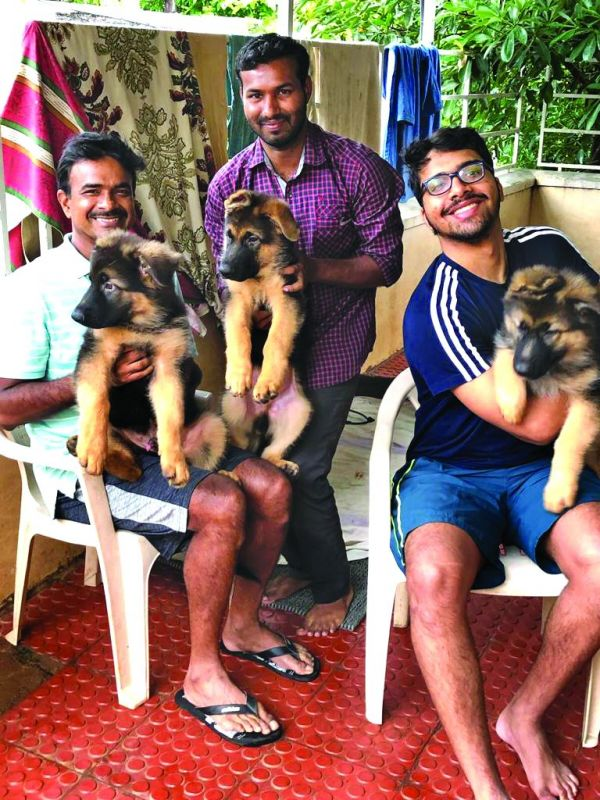 C.V. Anand with the puppies, which he is going to gift to  the Central Industrial Security Force (CISF) and the Rajiv Gandhi International Airport Authorities on Wednesday.