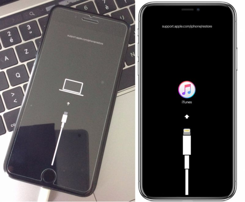 Apple iPhone 11 USB Type-C