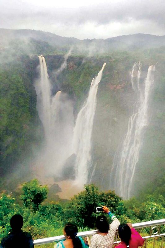 A view of the world famous Jog Falls in Shivamogga district which has been receiving copious rain since Tuesday (Photo:  KPN)
