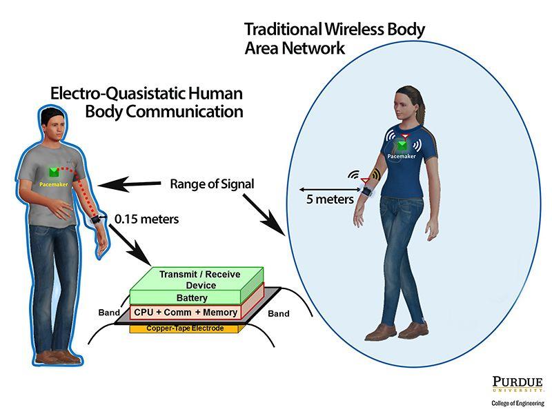 body wifi