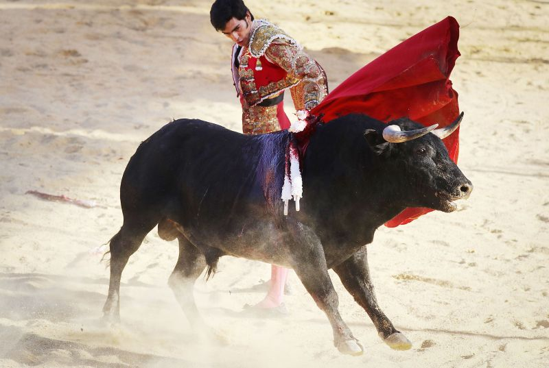 A matador competes with a bull at a sold-out bullfight on April 8, 2018 in Tijuana, Mexico. The most famous of them all is Embalse de Toros. (Photo: AFP)