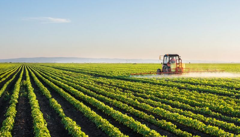 Around 50-60 per cent of India's population have some form of economic reliance on agriculture. (Photo:File)