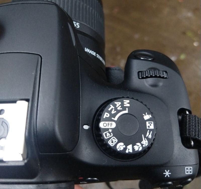 Canon EOS 3000D review