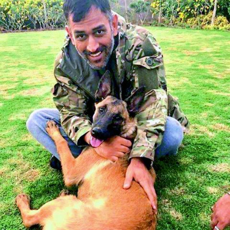 M.S. Dhoni often shares photos with his dog Sam